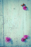 Purple thistle flowers on old wooden board, vintage colors Stock Image