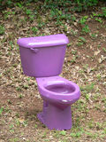 Purple Toilet. On Road Side Royalty Free Stock Photos