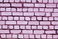 Purple toned rough brick wall pattern. Royalty Free Stock Photos