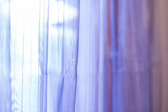 Purple transparent curtain background. Purple transparent curtain on a window Stock Images