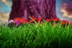 Purple tree trunk with grass. Purple tree trunk with green grass and red flowers Royalty Free Stock Photo