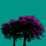 Purple trees. Vector illustration of purple foliage trees on green background Stock Images