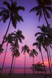 Purple tropical sunset. Spectacular blue, red, and purple sunset at a tropical resort vacation paradise beside a calm sea Stock Photos