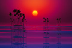 Purple tropical sunset Royalty Free Stock Photo