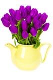 Purple tulips Royalty Free Stock Photography
