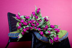Purple tulips on black chair with green cushion Stock Photography