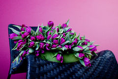 Purple tulips on black chair with green cushion Royalty Free Stock Images