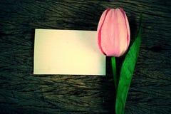 Purple tulips and blank card Stock Photos
