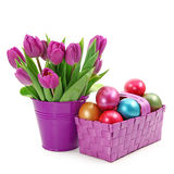 Purple tulips in bucket and easter eggs. Isolated on white background Royalty Free Stock Image