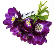 Purple tulips with a card - I love you Stock Photos