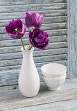 Purple tulips in a ceramic vase and white ceramic bowl on a blue wooden background. Stock Image