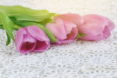 Purple tulips on a crochet tablecloth Royalty Free Stock Photography