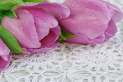 Purple tulips on a crochet tablecloth. Fresh purple tulips on a beautiful crochet tablecloth Royalty Free Stock Photos