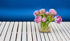 Purple tulips in the glass vase on the white wooden table and blue background. Indoor and outdoor decoration Royalty Free Stock Image