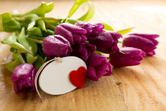 Purple tulips with heart card on wood background. Royalty Free Stock Images