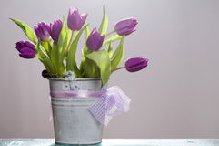 Purple tulips Stock Images