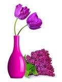 Purple tulips in vase Stock Images