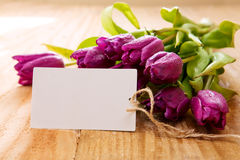 Purple tulips with white card on wood background. Royalty Free Stock Photo
