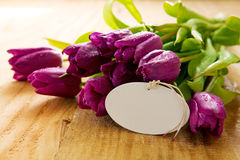 Purple tulips with white card on wood background. Royalty Free Stock Photos