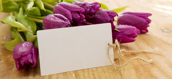 Purple tulips with white card on wood background. Royalty Free Stock Photography
