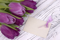 Purple tulips with white paper on a white wooden background with card for text. Womans Day. 8 March. Mother`s Day. Stock Image
