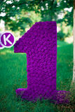 Purple unit on a grass background. And trees. Celebration of the first birthday Stock Image