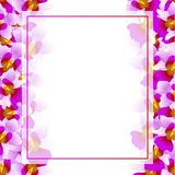 Purple Vanda Miss Joaquim Orchid Banner Card Border. Singapore National Flower. Vector Illustration.  royalty free illustration