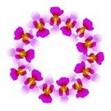 Purple Vanda Miss Joaquim Orchid Wreath. Singapore National Flower. Vector Illustration.  stock illustration