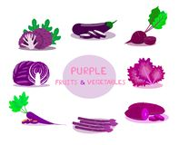 Purple fruits and vegetables isolated on white background. Type of Purple fruits and vegetables vector illustration