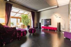 Purple velour sofa with TV area Stock Photos