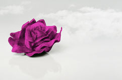Purple Velvet Rose. A purple velvet rose isolated on white and clouds on the background Stock Images