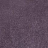 Purple vinyl texture Stock Images