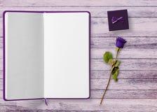 Purple, Violet, Lilac, Lavender royalty free stock image