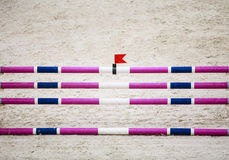Purple violet white obstacle for jumping horses. Riding competition. Stock Photography