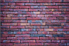 Purple wall with slim bricks Royalty Free Stock Images