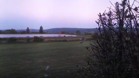 Purple Wallpaper. Beautiful purple sunset Royalty Free Stock Images