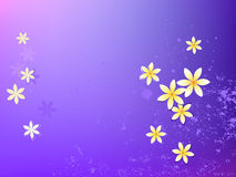 Purple wallpaper yellow flower Royalty Free Stock Images