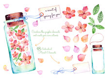 Purple watercolor collection. 18 of individual elements for your design with delicate spring flowers, leaves, flower petals, glass jars, label for your message vector illustration
