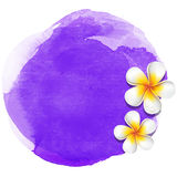 Purple watercolor spa background Royalty Free Stock Image