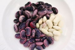 Purple and White Beans Stock Photography