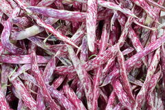 Purple and white beans Stock Photo
