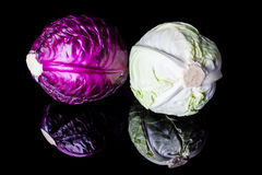 Purple and white cabbage Stock Photo