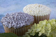 Purple and white cupcakes Royalty Free Stock Photos