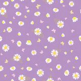 Purple white daisies ditsy seamless pattern. Great for summer vintage fabric, scrapbooking, wallpaper, giftwrap. Suraface pattern design Stock Images
