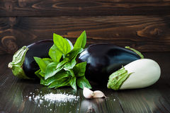 Purple and white eggplant (aubergine) with basil and garlic on dark wooden table. Fresh raw farm vegetables - harvest fr. Om the garden in rustic kitchen. Rural Royalty Free Stock Photo