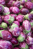 Purple and white eggplant. A large pile of small purple and white eggplants at the Clement Street Farmer's Market in San Francisco royalty free stock photos