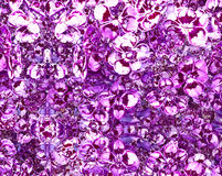 Purple and White Flowers Stock Image