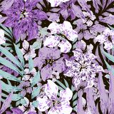 Purple and white flowers with leaves. Black background. vector illustration