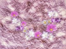 Purple and white flowers in moving background.  royalty free stock photos