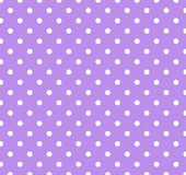 Purple with white polka dots Stock Images